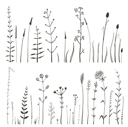green meadow: Sketchy Wild Field Flowers and Grass on White Monochrome Collection. Rustic colorful meadow growth illustration set. Vector