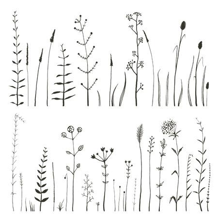 pflanzen: Sketchy Wilde Feld-Blumen und Gras auf weißem Monochrome Collection. Rustic bunten Wiese Wachstum Illustration festgelegt. Vektor