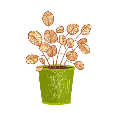 flowerpot: Leaf and house gardening, flowerpot and flora isolated object, houseplant design illustration Illustration