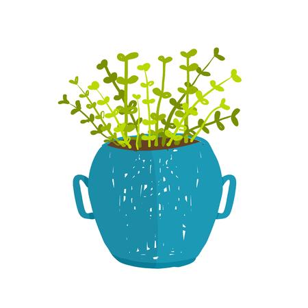houseplant: Leaf and house gardening, flowerpot and flora isolated object, houseplant design illustration Illustration