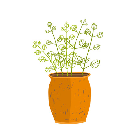 flora: Leaf and house gardening, flowerpot and flora isolated object, houseplant design cartoon illustration.