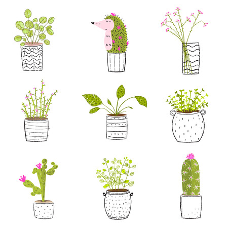 Set of flowers in pots vector hand drawn set. Çizim