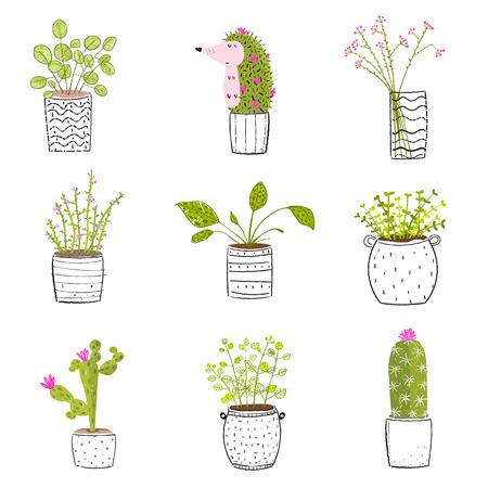 Set of flowers in pots vector hand drawn set. Illustration