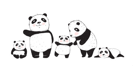 Cute Panda Bears family, mother father and kids isolated.