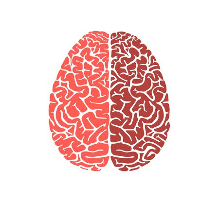 Human brain shape education icon flat design