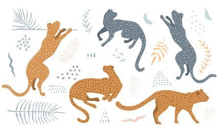 Wild cats in different poses collection clip art with floral leaves and abstract shape designer kit. Stock Illustratie
