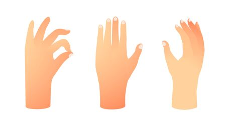 Hands collection isolated on white, palms and fingers raised up, clip art gradient realistic objects.