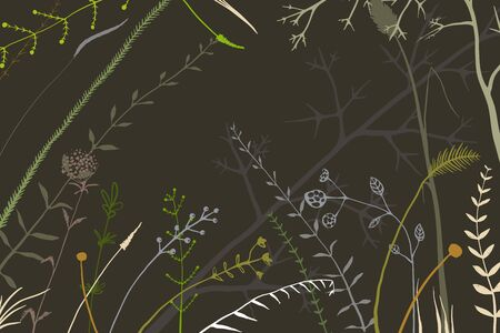 Hand drawn random herbs and wild meadow wild grass arrangement backdrop on black. Background for flyer, invitation or packaging design.