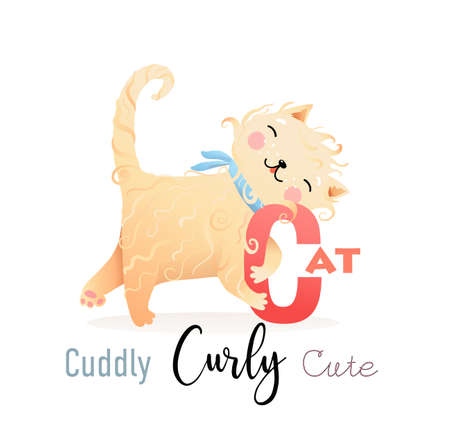 Cute cartoon Cat Cuddly and Curly for letter C. Fun Alphabet for kids education and study. Kindergarten and preschool reading study. Vector illustration in watercolor style. Illustration