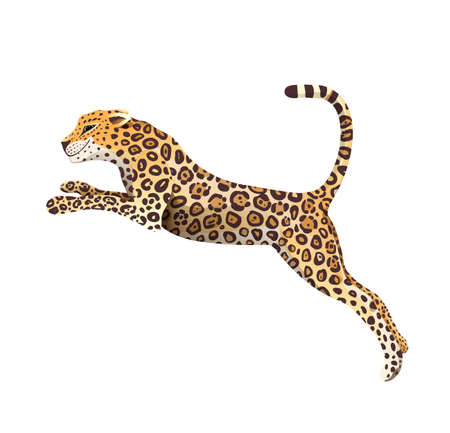 Realistic hand drawn Jaguar jump vector isolated cartoon. Exotic jungle and rainforest symbol big wild cat panther illustration. Isolated animal clipart.