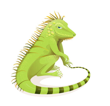 Realistic hand drawn Iguana vector cartoon. Green exotic jungle and rainforest reptile zoology illustration. Isolated animal and vertebrate clipart.