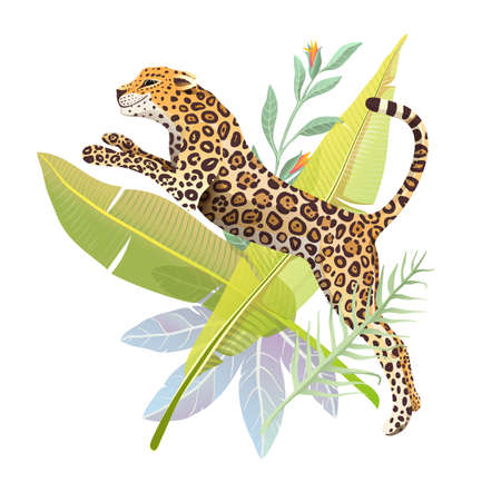 Realistic hand drawn Jaguar jump in jungle forest vector isolated design for t shirt print or poster. Exotic jungle and rainforest nature big wild cat panther illustration. Isolated animal design.