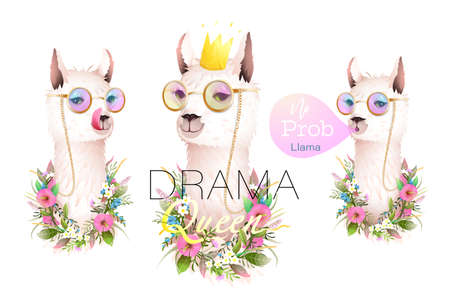 Llama no drama designer collection for t shirts, greeting cards and other projects. Realistic vector lama animal character illustration with golden modern quotes lettering. Vector in watercolor style.