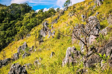 mountain hill with rocks  grasses and  clear blue sky background