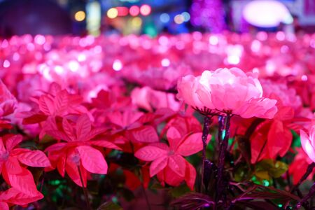 artificial pink flower with light decorating