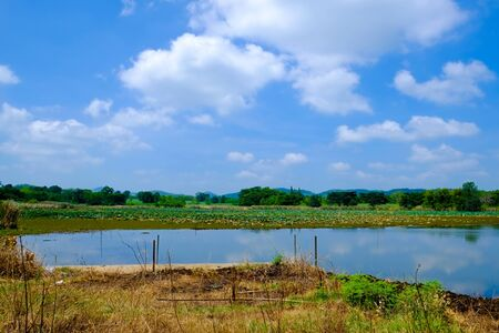 big lake with green field and blue sky