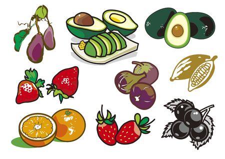 Fruit 1 向量圖像