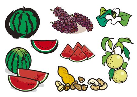 Fruit 3  イラスト・ベクター素材