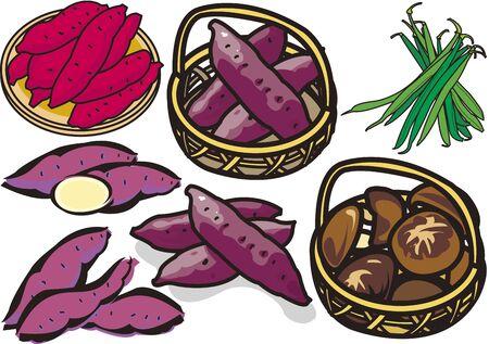 Vegetables 7