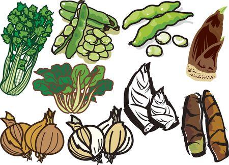 Vegetables 9