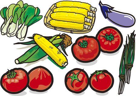 Vegetables 10 版權商用圖片 - 128686374