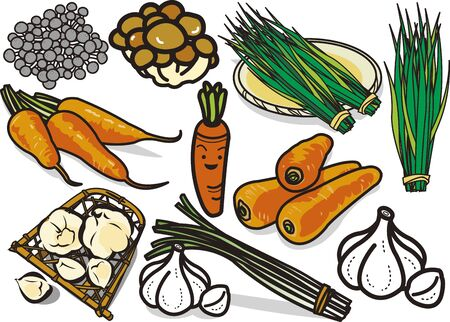 Vegetables 11 Illustration