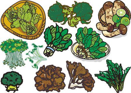 Vegetables 13 版權商用圖片 - 128686385