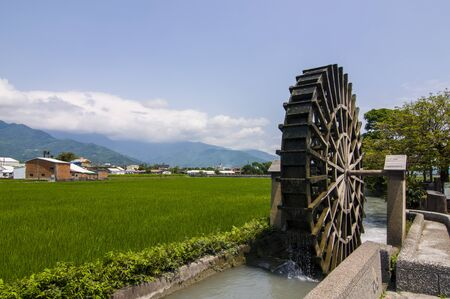waterwheel: Paddy Field waterwheel Stock Photo