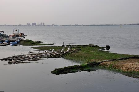 폐기물 오염