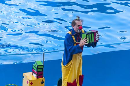 Clown performing in an amusement park