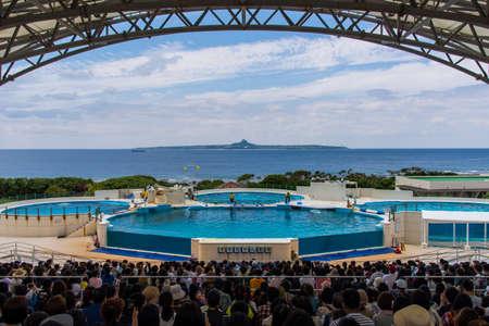 Dolphin show ,Okinawa, Japan -April 18 ,2018:Tourists watching a dolphin show at the Okinawa Churaumi Aquarium 新闻类图片