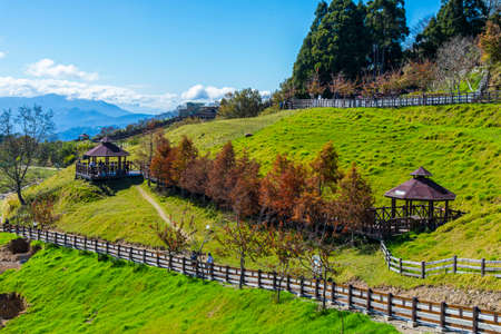 Sunny and wide Qingjing Farm
