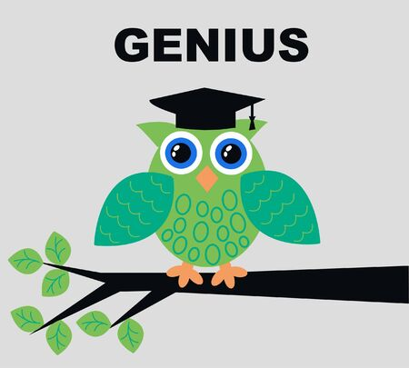smart card: genius