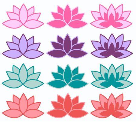 lotus flower: lotus flowers
