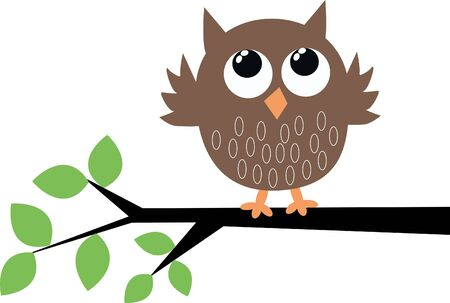 owl on branch: a cute brown owl