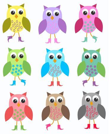 ilustration: colourful owls Illustration