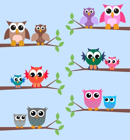 owls Illustration