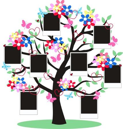 arbol geneal�gico: marcos Vectores