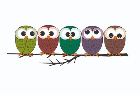 owl on branch: owls Illustration