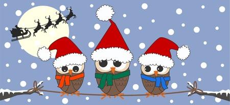 lechuzas: Feliz Navidad tarjeta de bandera