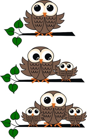 owls Stock Vector - 11528248