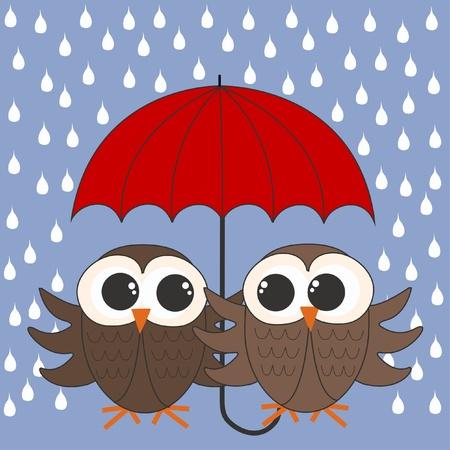buhos: b�hos paraguas lloviendo