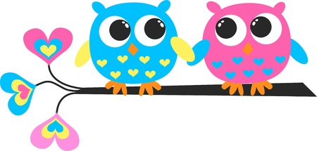 cute owl: colorful owls