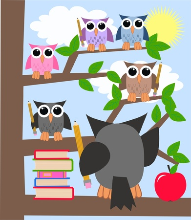 owl on branch: school education learning owls