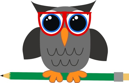 a wise owl Vector