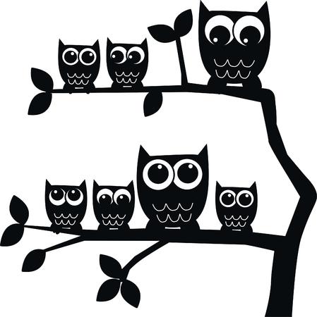 owl family owls
