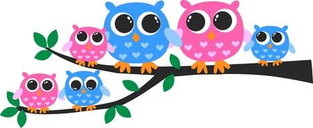 owls Illustration