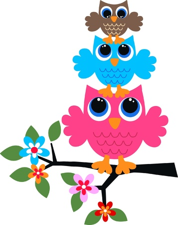 owl on branch: three colorful owls Illustration