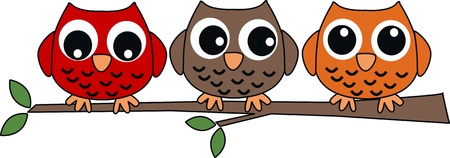 jpg: three sweet owls