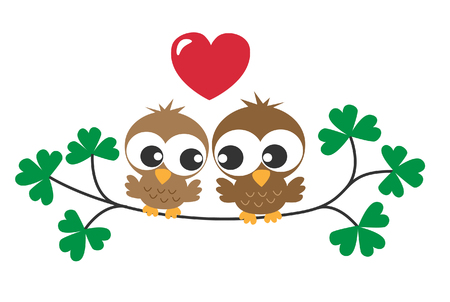 two sweet owls in love Vector